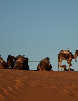 5 Days Trip From Marrakech To Merzouga Desert