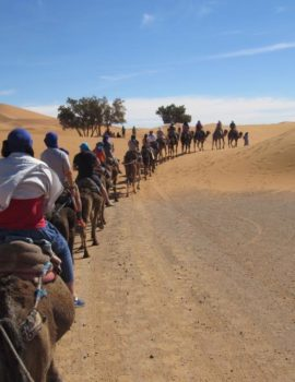 6 Days Marrakech Fes Desert 4wd Rough Tour