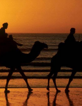 7 Days In South Desert Excursion From Marrakech