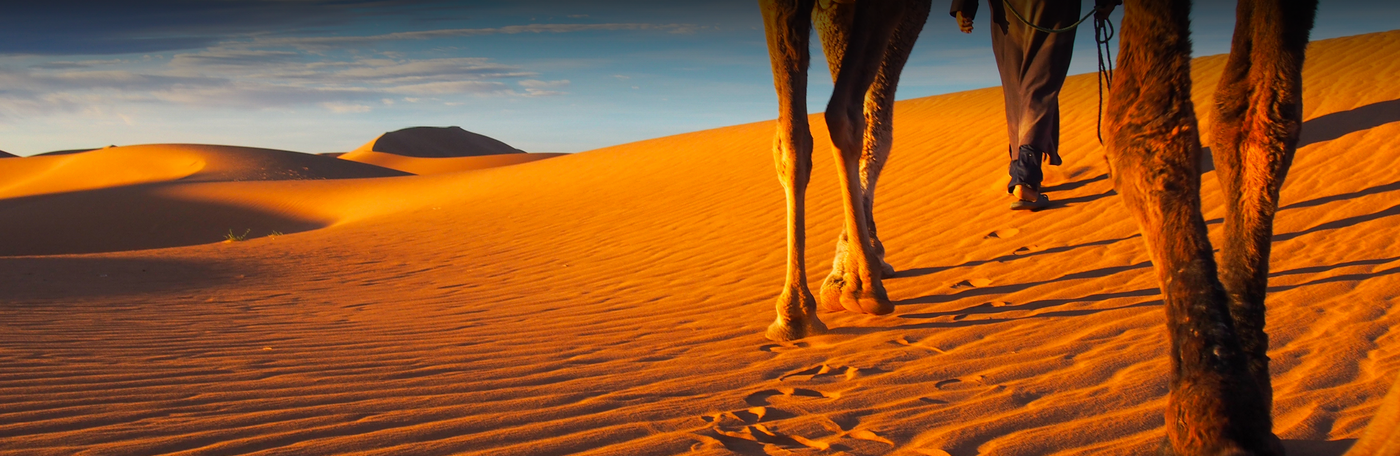 Merzouga camel ride tours