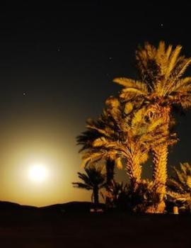 Merzouga desert camp night
